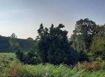 زمین 2000 متر مسکونی واقع در منطقه روستایی در شیپور-عکس کوچک
