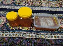 فروش عسل گون مرغوب رشته کوه های زاگرس در شیپور-عکس کوچک