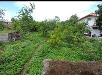 فروش زمین مسکونی 714 متر در تنکابن خرم آباد در شیپور-عکس کوچک