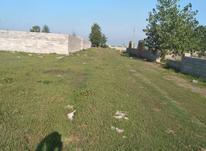 فروش زمین مسکونی 240 متر در چاف و چمخاله در شیپور-عکس کوچک