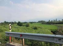 فروش زمین مسکونی 1400 متر در تنکابن در شیپور-عکس کوچک