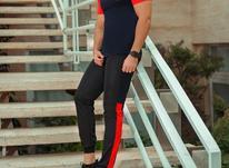 ست تیشرت وشلوار مردانه مدل Zelata در شیپور-عکس کوچک