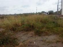 فروش زمین مسکونی 3000 متر در محمودآباد در شیپور