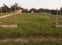 فروش 870 متر زمین در کوتنا  در شیپور-عکس کوچک