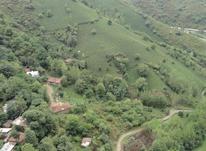 1000 متر زمین مسکونی در لیالستان در شیپور-عکس کوچک