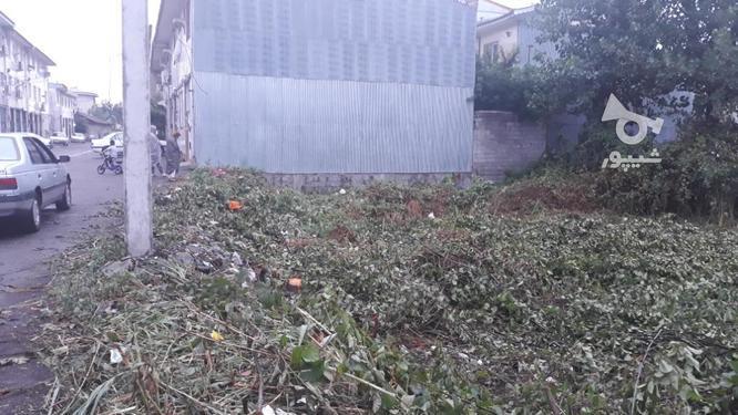 زمین شهری باسند و پروانه ساخت  در گروه خرید و فروش املاک در گیلان در شیپور-عکس1