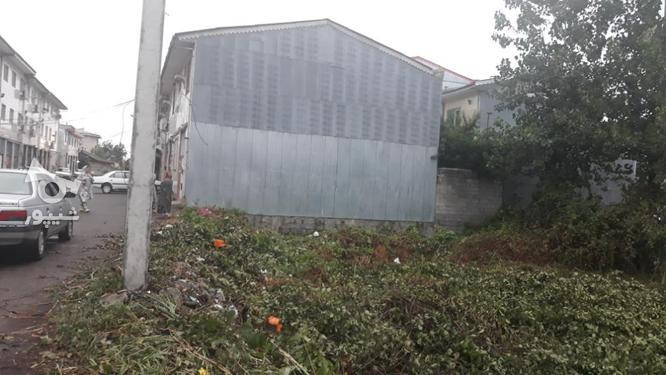 زمین شهری باسند و پروانه ساخت  در گروه خرید و فروش املاک در گیلان در شیپور-عکس3