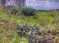 زمین مسکونی 233 متر در محمودآباد در شیپور-عکس کوچک