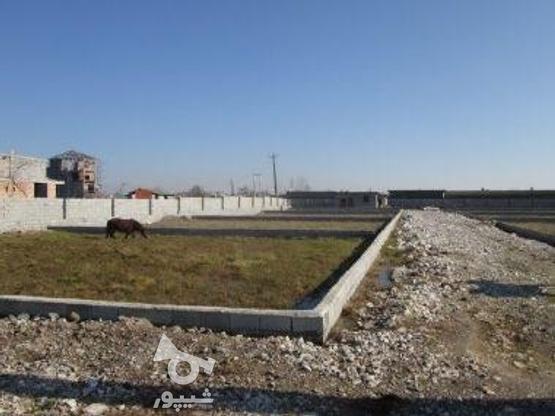 زمین براتوبان 150 متر شهرکی در گروه خرید و فروش املاک در مازندران در شیپور-عکس1