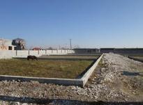 زمین مسکونی 100 متر در ارطه/براتوبان ساری  در شیپور-عکس کوچک