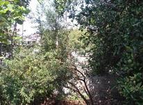 فروش باغ 260 متر کمربندی امامزاده عبدالله در شیپور-عکس کوچک