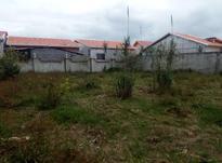 فروش زمین باغی و کشاورزی 27000 متر در جاده خانه دریا در شیپور-عکس کوچک