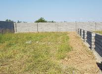 فروش فوری زمین 246 متری در کوچه فجر  قائم شهر در شیپور-عکس کوچک