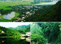 زمین مسکونی 10000 متر بر خط در لنگرود لیلاکوه ملات در شیپور-عکس کوچک