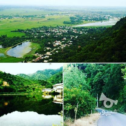 زمین مسکونی 10000 متر بر خط در لنگرود لیلاکوه ملات در گروه خرید و فروش املاک در گیلان در شیپور-عکس1