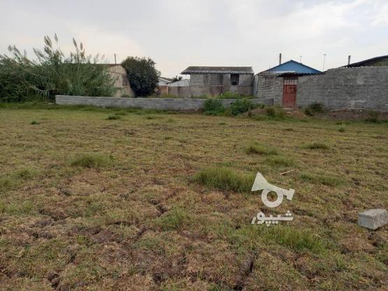 فروش 180 متر زمین طرح مسکونی شهرک یثرب در گروه خرید و فروش املاک در مازندران در شیپور-عکس2