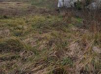 فروش زمین مسکونی 147 متر در سوستان لاهیجان در شیپور-عکس کوچک