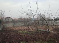1500 متر زمین مسکونی با پروانه ساخت در لیالستان در شیپور-عکس کوچک