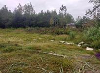 فروش زمین مسکونی 500 متر در روستای شهرستان در شیپور-عکس کوچک