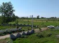 فروش زمین مسکونی 215 متر در چاف و چمخاله در شیپور-عکس کوچک