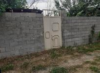 فروش زمین مسکونی 300 متر در صومعه سرا در شیپور-عکس کوچک
