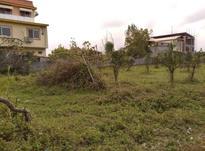 فروش زمین کشاورزی 1500 متر در آمل در شیپور-عکس کوچک