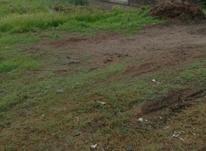 فروش زمین اداری و تجاری 5000 متر در جاده چاف  در شیپور-عکس کوچک