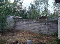 فروش زمین مسکونی 150 متر در لنگرود در شیپور-عکس کوچک