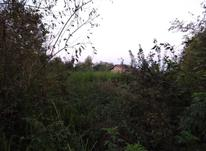 3200 متر زمین مسکونی در تموشل در شیپور-عکس کوچک