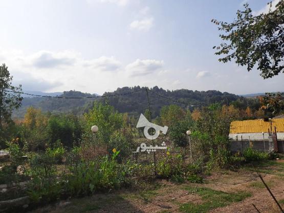 2000متر زمین مسکونی در لاهیجان در گروه خرید و فروش املاک در گیلان در شیپور-عکس3