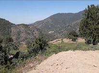 500 متر زمین مناسب ساخت ویلا  در شیپور-عکس کوچک