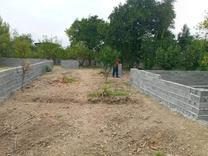 فروش زمین مسکونی 365 متر در جاده فرح آباد در شیپور