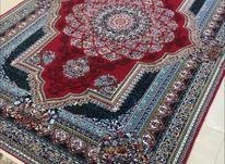 ##فرش زمرد مشهد## در شیپور-عکس کوچک