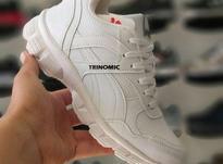 کفش کتونی ورزشی پوما (Puma) مدل Trinomic در شیپور-عکس کوچک