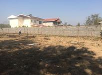فروش زمین مسکونی 1450 متر در آستانه اشرفیه در شیپور-عکس کوچک