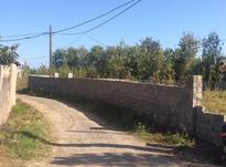 890 متر زمین مسکونی سنددار در ناصرکیاده در شیپور-عکس کوچک