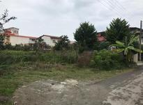فروش زمین مسکونی 601 متر در نشتارود در شیپور-عکس کوچک