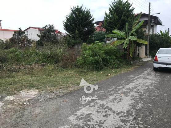فروش زمین مسکونی 601 متر در نشتارود در گروه خرید و فروش املاک در مازندران در شیپور-عکس5