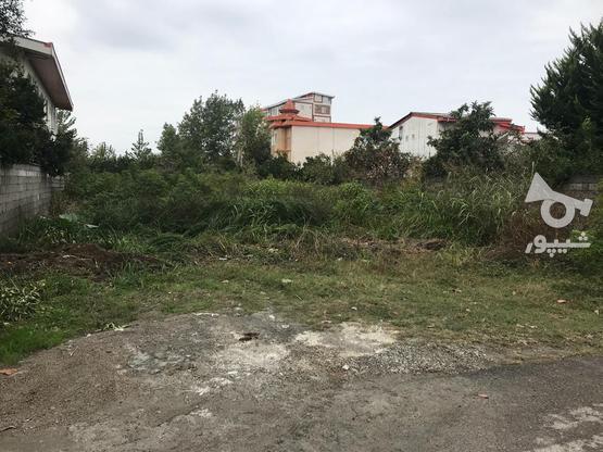 فروش زمین مسکونی 601 متر در نشتارود در گروه خرید و فروش املاک در مازندران در شیپور-عکس3
