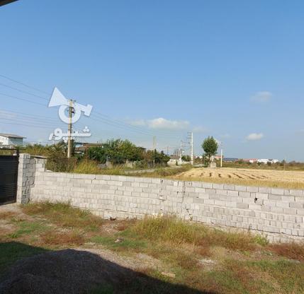 ویلا 250 متری در آمل در گروه خرید و فروش املاک در مازندران در شیپور-عکس6