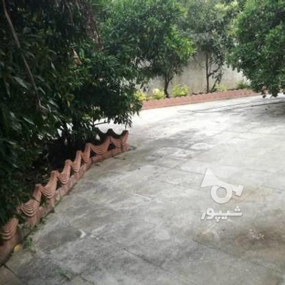 فروش ویلاباغ 450 متر در محمودآباد در گروه خرید و فروش املاک در مازندران در شیپور-عکس11