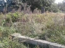 فروش فوری زمین مسکونی 300 متری در شیپور