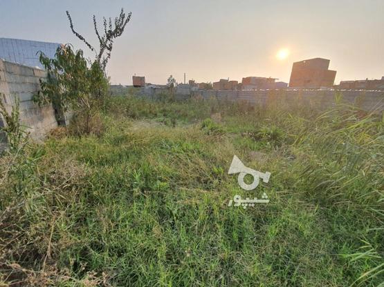 فروش زمین مسکونی 100 متر در بابلسر در گروه خرید و فروش املاک در مازندران در شیپور-عکس1