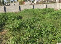 فروش زمین مسکونی 250 متری با جواز ساخت در شیپور-عکس کوچک