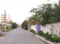 زمین مسکونی 274 متر درگلسار ایزدشهر در شیپور-عکس کوچک