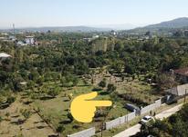 زمین 920 متری داخل بافت در کنار اب برق گاز در شیپور-عکس کوچک