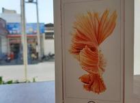 iphone 6 s در شیپور-عکس کوچک