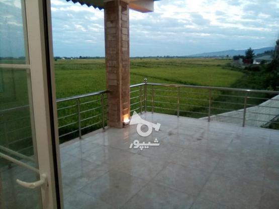 فروش ویلا 275 متر در رضوانشهر در گروه خرید و فروش املاک در گیلان در شیپور-عکس11