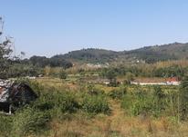فروش زمین مسکونی 300 متر در ازبرم سیاهکل در شیپور-عکس کوچک