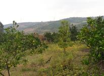 زمین های باغی چشم انداز و ارتفاعات قائم شهر در شیپور-عکس کوچک